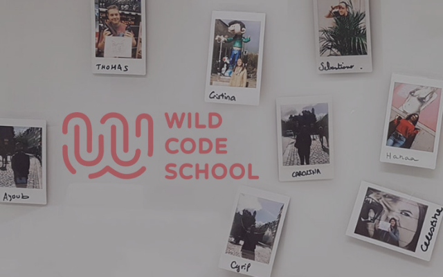 Why you should learn web development at Wild Code School