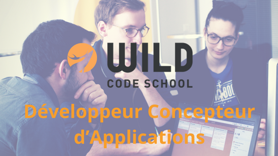 Développeur Concepteur d'Applications